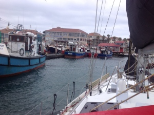 The Working Harbour of Port St Francis